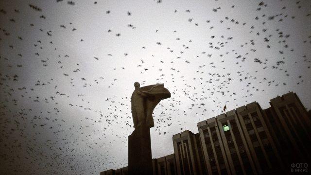 Стая птиц пролетает над памятником Ленину