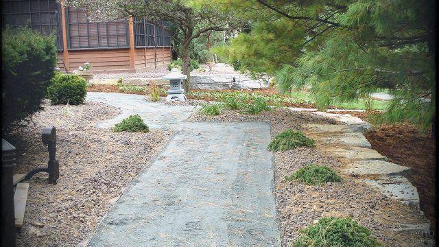 Дорожка под сосной в японском саду камней