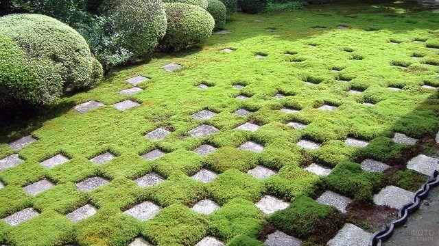 Геометрический сад камней с зелёной травой