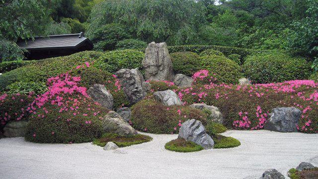Японский сад камней с розовыми цветами