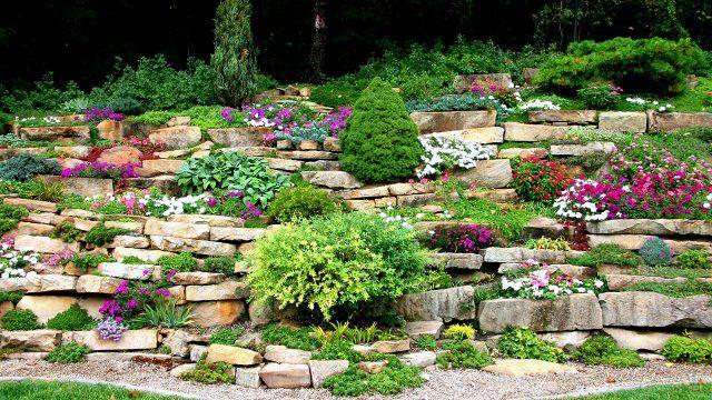 Яркий вертикальный сад камней с цветами