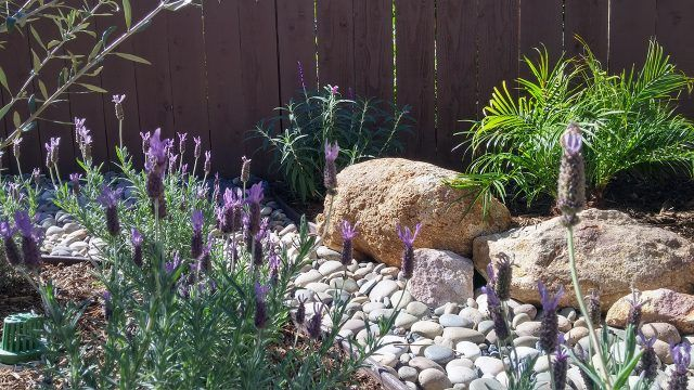 Камни в дачном ландшафтном дизайне