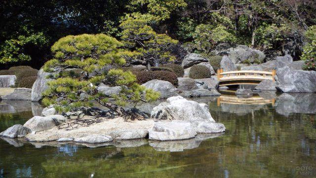 Мостик над прудом в саду камней