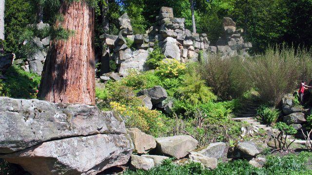 Природный сад камней в Северной Америке