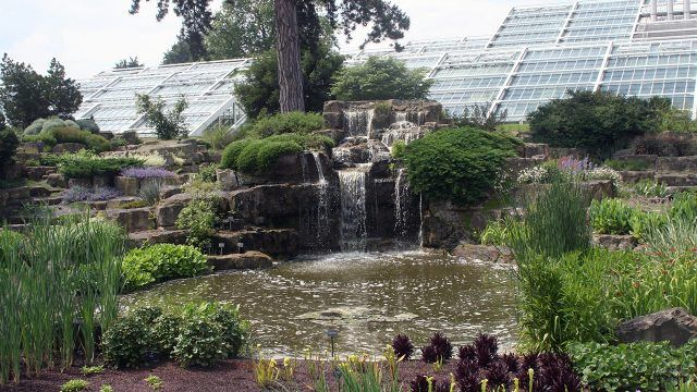 Пруд с водопадом в каменном саду