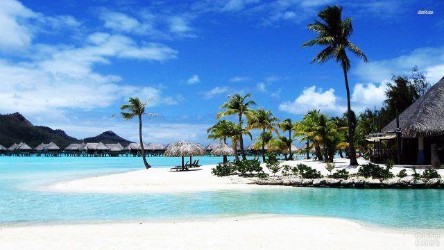 Белый песок и изумрудные пальмы у бунгало