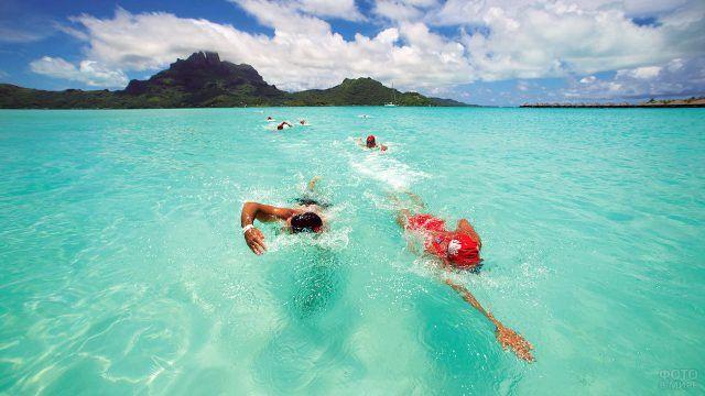 Пловцы в водах Бора-Бора