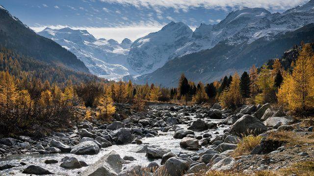 Каменистая горная река среди жёлтых деревьев