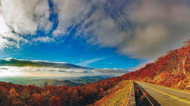 Красный осенний лес в горах