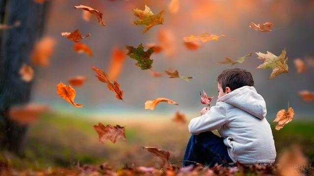 Мальчик задумчиво разглядывает кленовый лист под листопадом