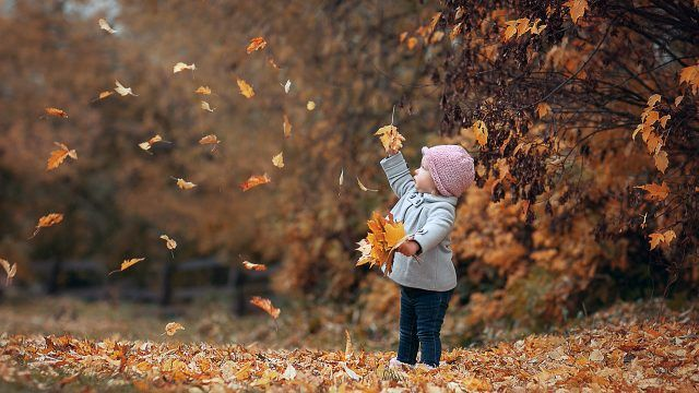 Малышка под листопадом