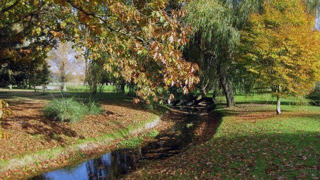 Облетевшие листья в ручейке и на зелёной траве