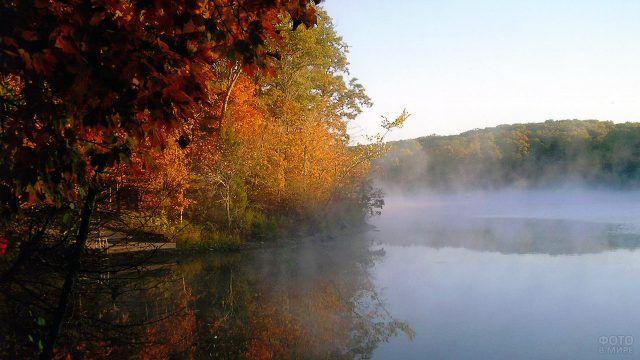 Туман над водой в осеннем лесу