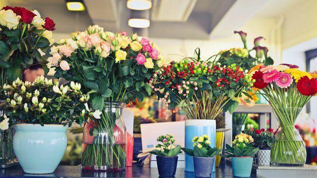 Много ярких цветов в вазах и горшках