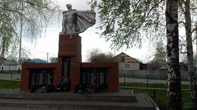 Памятник воинам-землякам погибшим в годы ВОВ в селе Васильдоле