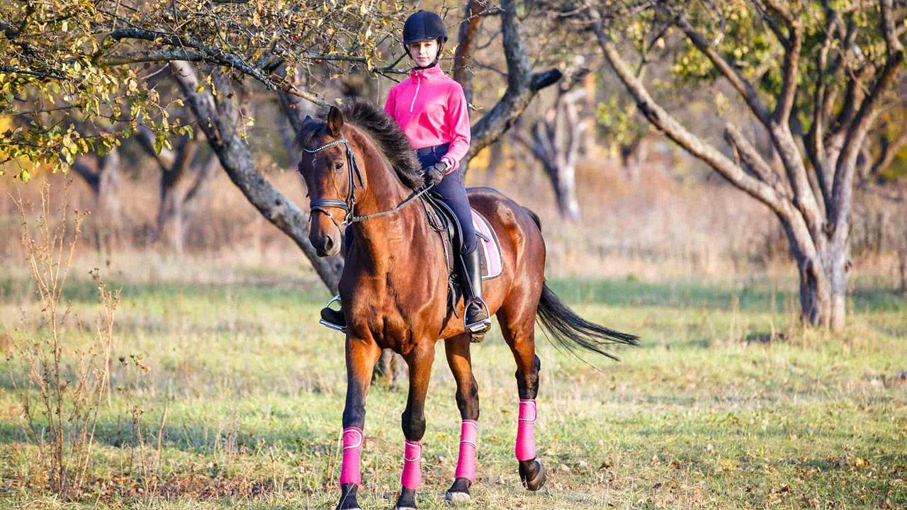 Девочка-наездница на лошадке в осеннем саду