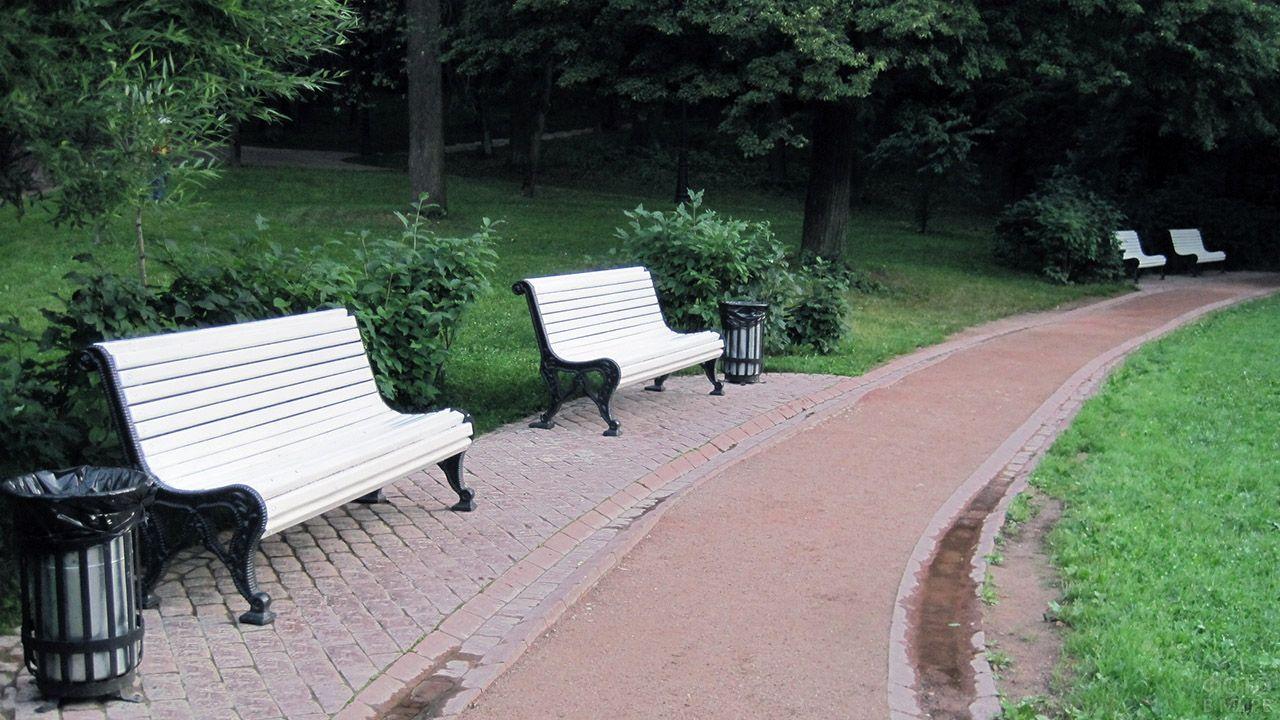 Белые парковые скамейки у дорожки в парке