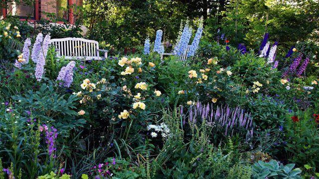 Белая скамейка в цветущем английском саду