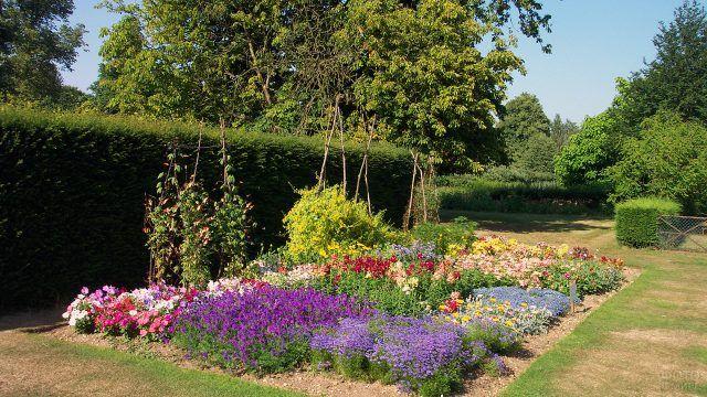 Цветочная клумба-ассорти в английском саду