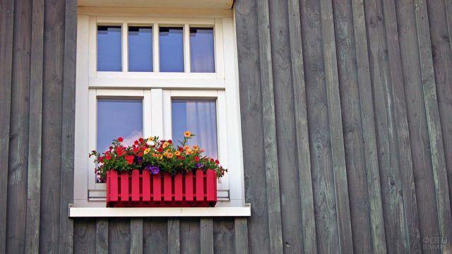 Декоративная клумба с яркими цветами на окне деревенского дома