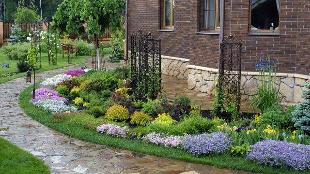 Клумба-бордюр с пёстрыми цветами вдоль дома