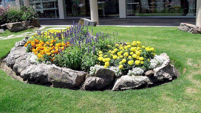 Круглый рокарий с бархатцами и полевыми цветочками