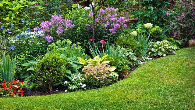 Многоуровневый цветник в саду с газоном