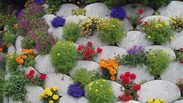 Вертикальный пёстрый рокарий с яркими цветами