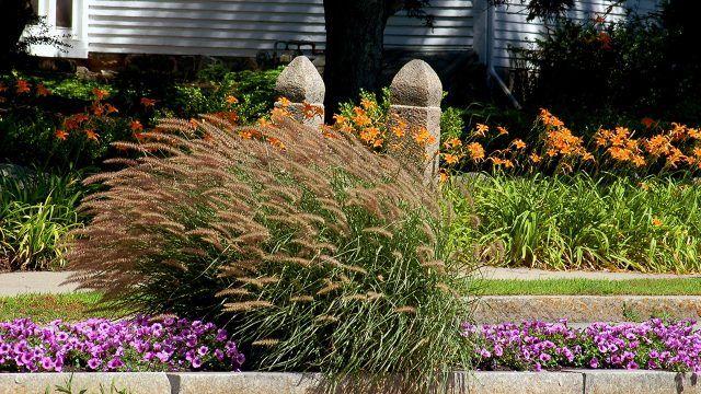 Двухуровневый цветочный бордюр с каменными колоннами и кустом декоративных колосьев