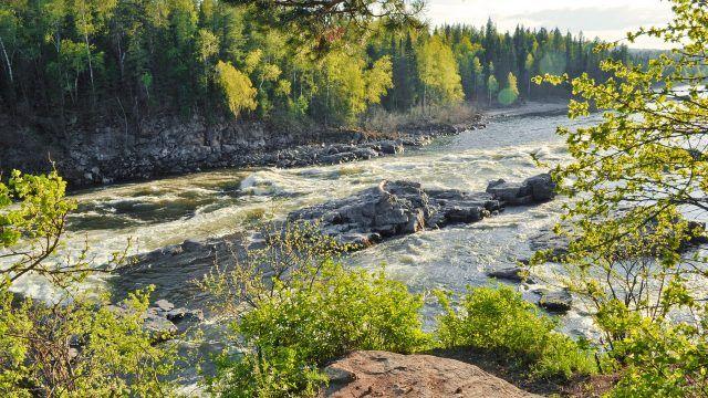 Горная река в забайкальской тайге
