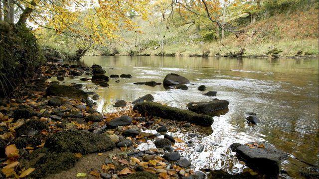 Каменистая речка