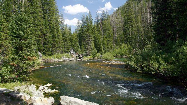 Перекаты на таёжной реке