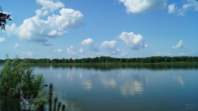 Ширина реки Обь