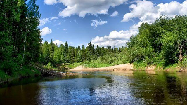 Таёжная река в Сибири