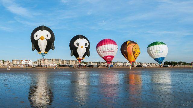 Креативные воздушные шары на берегу реки