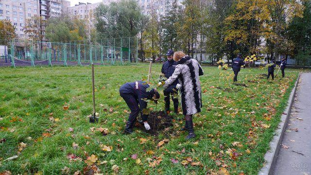 Озеленение придомовой территории сотрудниками МВД в Санкт-Петербурге