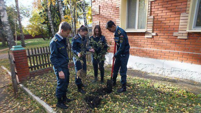 Студенты колледжа гражданской обороны сажают дерево на придомовой территории