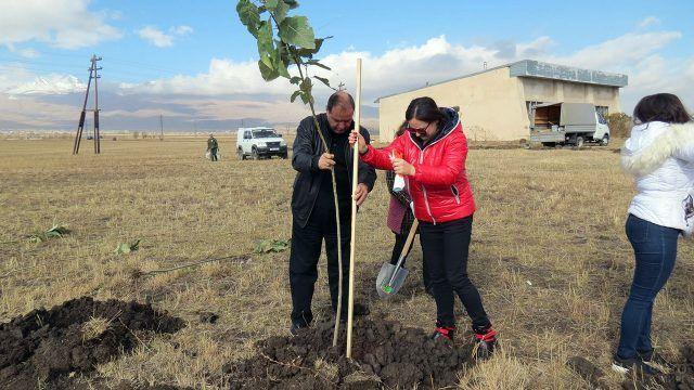 Волонтёры на акции по озеленению предгорья в Средней Азии