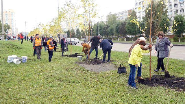 Жители Междуреченска в Единый день посадки деревьев и кустарников