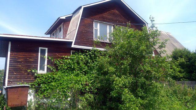 Дачный дом на высоком подклёте с зелёным кустом под окнами