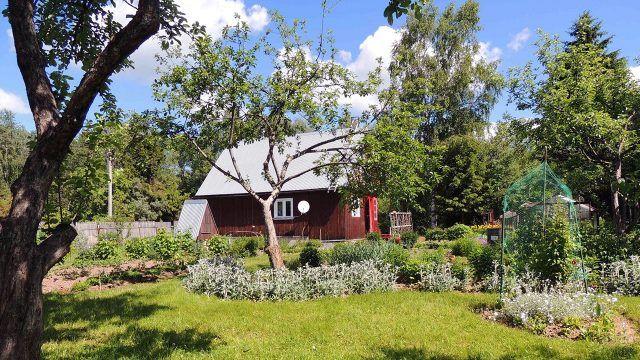 Деревянная дача на просторном участке с лужайками и деревьями