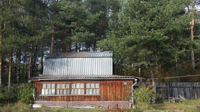 Торец дачного дома под соснами с деревянной застеклённой верандой