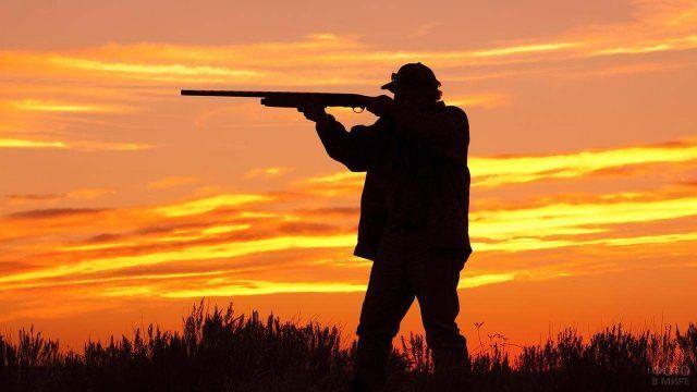 Силуэт охотника на закате