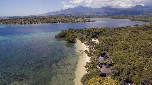 Густая тенистая зелень на побережье Менджангана на Бали