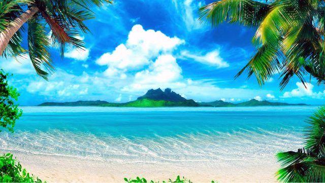 Открыточный вид на море из-под пальм Бали