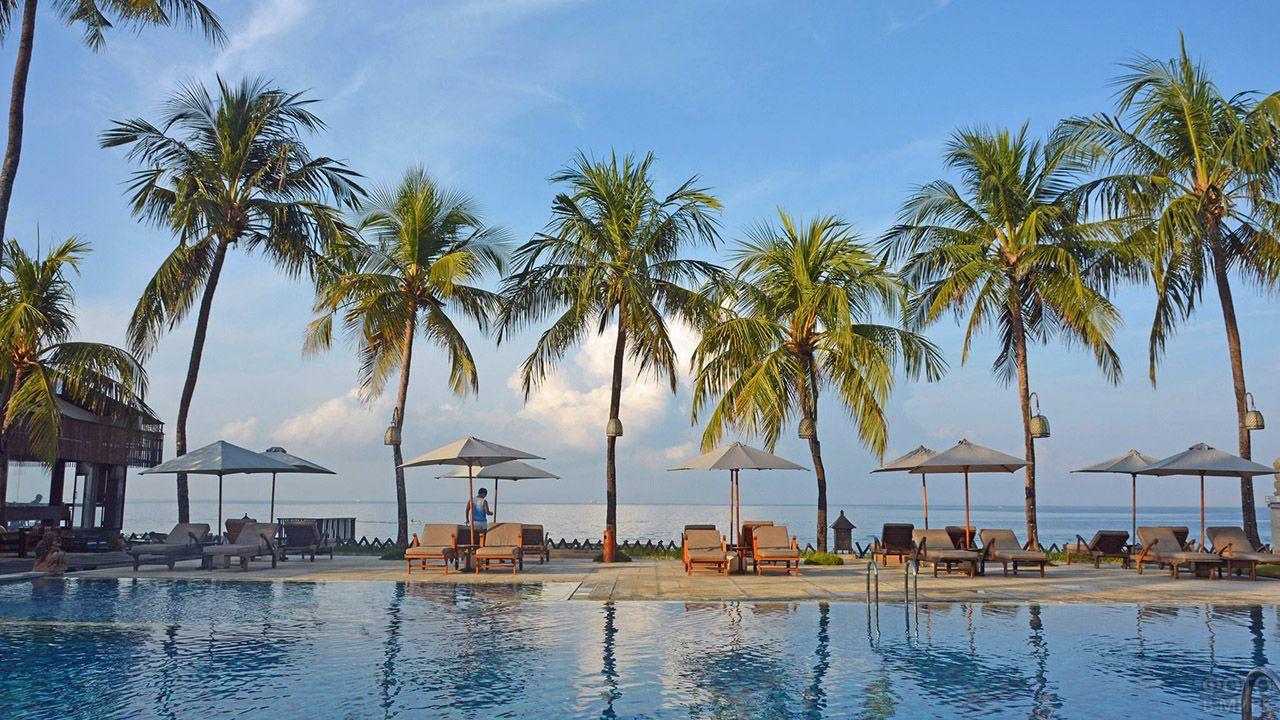 Шезлонги у бассейна под пальмами на пляже Бали