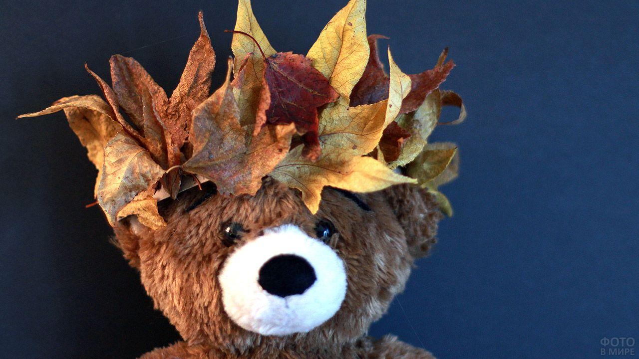 Плюшевый мишка в короне из опавших кленовых листьев