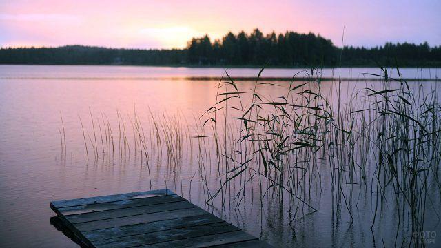 Берег лесного озера на закате