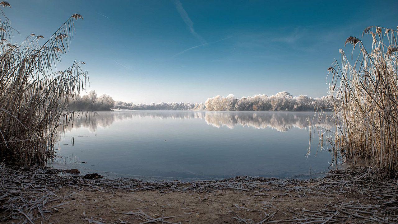 Первые заморозки с инеем на траве и деревьях вокруг озера