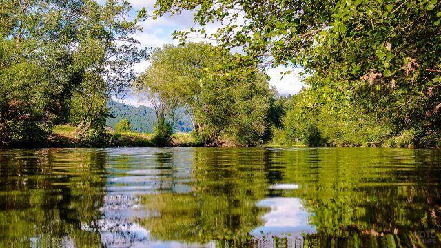 Зелёный берег озера